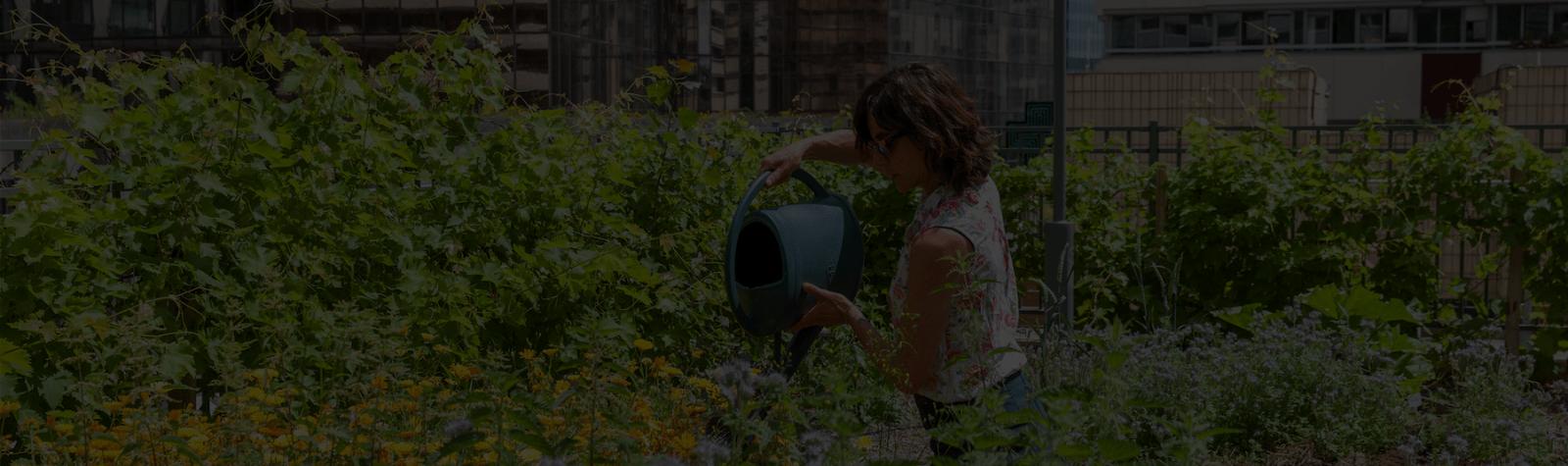 Paris La Défense obtient son premier label ÉcoJardin pour le Jardin des Reflets